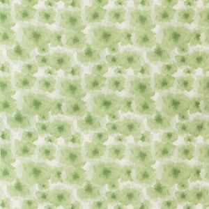 MANDERS-3 MANDERS Jade Kravet Fabric