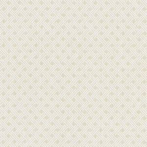 NK 0008 CAND CANDELARIA White Sand Old World Weavers Fabric