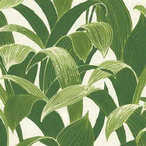 NW31300 Banana Groves Seabrook Wallpaper