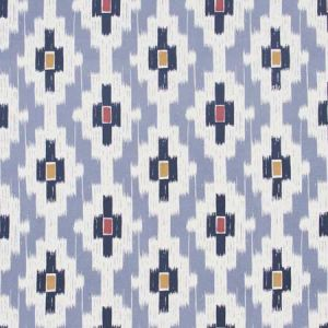 PATH FINDER Slate Carole Fabric