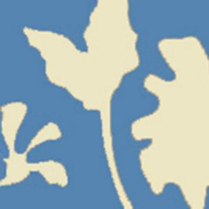 AP804B-01 POTALLA BACKGROUND French Blue On Off White Quadrille Wallpaper