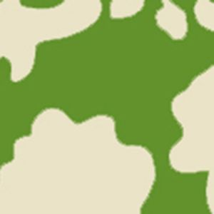 AP804B-06 POTALLA BACKGROUND Jungle Green On Off White Quadrille Wallpaper