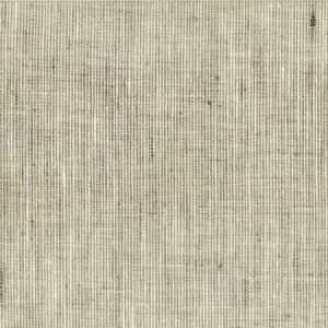 REMBRANDT 1 Nickel Stout Fabric