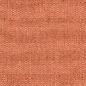 RESOLVE Canyon Carole Fabric