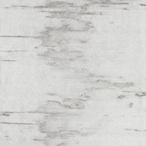 RG 0001 BEAR POLAR BEAR Greige Scalamandre Fabric