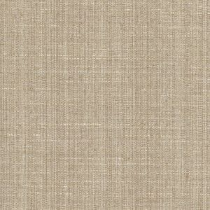 ROCK WALL Shale Carole Fabric