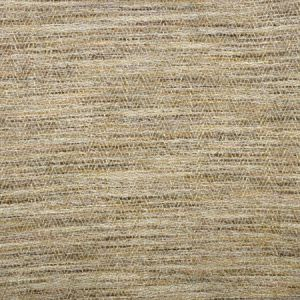 S2038 Pecan Greenhouse Fabric