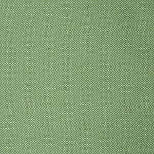 S2251 Green Greenhouse Fabric