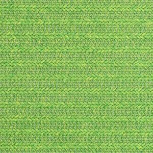 S2431 Palm Greenhouse Fabric