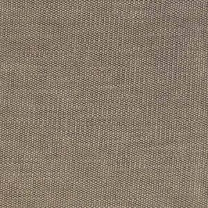 S2521 Stone Greenhouse Fabric