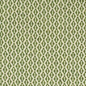 S2855 Fern Greenhouse Fabric
