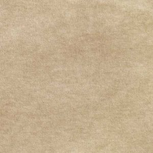 S2922 Beige Greenhouse Fabric