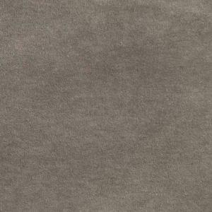 S2976 Ash Greenhouse Fabric