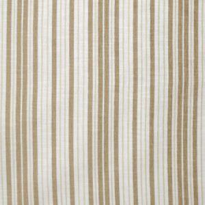 S3699 Beach Greenhouse Fabric