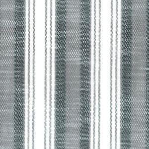 SAMSON 4 CHARCOAL Stout Fabric