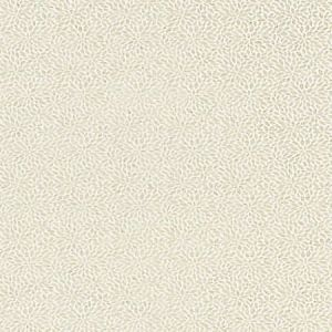 SC 0001 27239 RISA WEAVE Birch Scalamandre Fabric