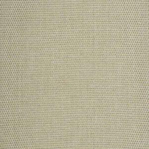 SILTSTONE BASKET Gold Dust Fabricut Fabric