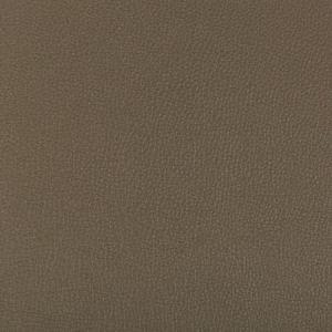 SYRUS-606 SYRUS Porcini Kravet Fabric
