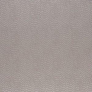 TAMARAC 1 DRIFTWOOD Stout Fabric