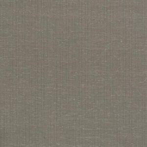 TAURI Nutmeg Fabricut Fabric