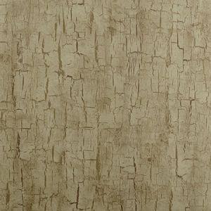 W0062/01 TREE BARK Antique Clarke & Clarke Wallpaper