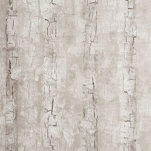 W0062/02 TREE BARK Birch Clarke & Clarke Wallpaper