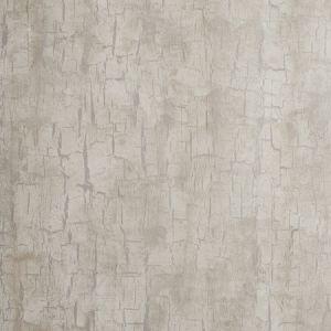 W0062/03 TREE BARK Parchment Clarke & Clarke Wallpaper