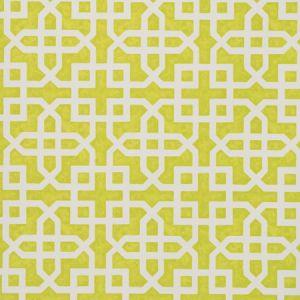 W0084/01 MONSERRAT Citron Clarke & Clarke Wallpaper