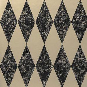 W0087/01 TORTOLA Charcoal Clarke & Clarke Wallpaper