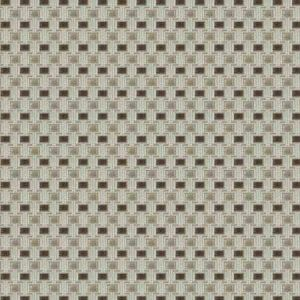 WAZN Latte Fabricut Fabric