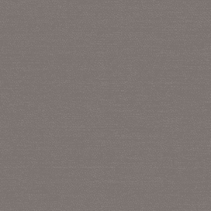 WBN 00029173 PHOENIX Dark Grey Scalamandre Wallpaper