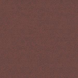 WBN 00039173 PHOENIX Terra Scalamandre Wallpaper