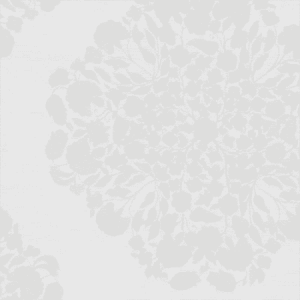 WBN 00059154 RENDEZVOUS White Scalamandre Wallpaper