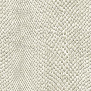 WSM 0001BOAC BOACONDA Vanilla Scalamandre Wallpaper