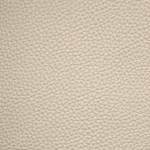 WSM 0003BUCK BUCK Egg Shell Scalamandre Wallpaper