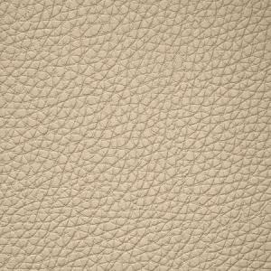 WSM 0004BUCK BUCK Milkweed Scalamandre Wallpaper