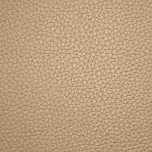 WSM 0007BUCK BUCK Field Scalamandre Wallpaper
