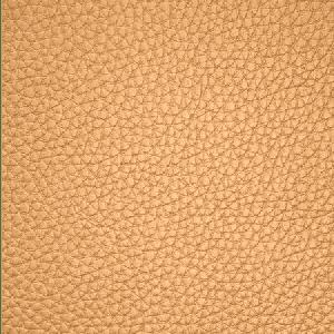 WSM 0008BUCK BUCK Ginger Scalamandre Wallpaper