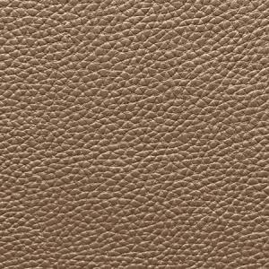 WSM 0012BUCK BUCK Dark Chocolate Scalamandre Wallpaper