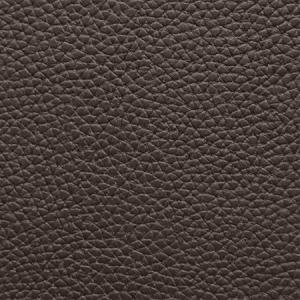 WSM 0014BUCK BUCK Espresso Scalamandre Wallpaper
