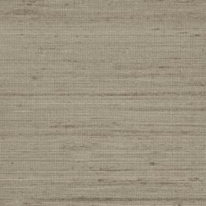 WTT 661448 BANDRA WILD SILK Mocha Scalamandre Wallpaper