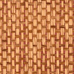 WTW 0425CANY CANYON ROAD Cinnamon Scalamandre Wallpaper
