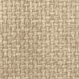 WTW GT3908 ORGANIC PAPERWEAVE Desert Scalamandre Wallpaper