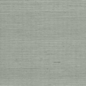 WTW GT3925 ORGANIC SISAL Spa Scalamandre Wallpaper