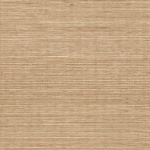 WTW GT3941 ORGANIC SISAL Mink Scalamandre Wallpaper