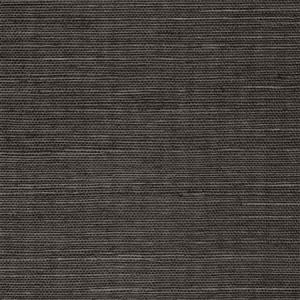 WTW GT3942 ORGANIC SISAL Espresso Scalamandre Wallpaper
