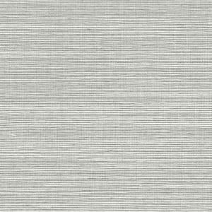 WTW GT3945 ORGANIC SISAL Shadow Scalamandre Wallpaper
