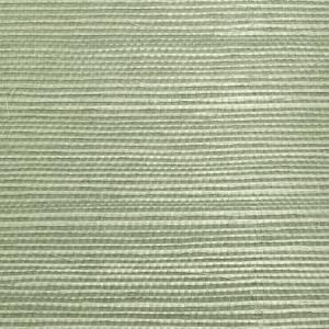 WTW GT3969 ORGANIC SISAL Sea Glass Scalamandre Wallpaper