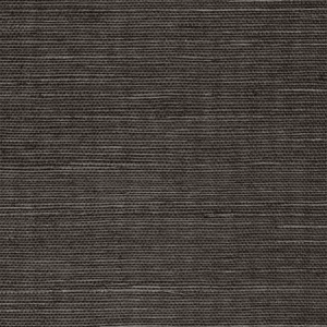 WTW GT3973 ORGANIC SISAL Onyx Scalamandre Wallpaper