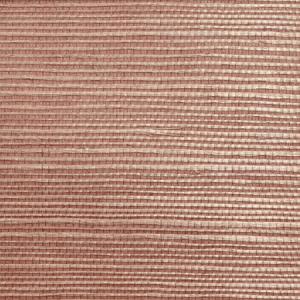 WTW GT3978 ORGANIC SISAL Earth Scalamandre Wallpaper
